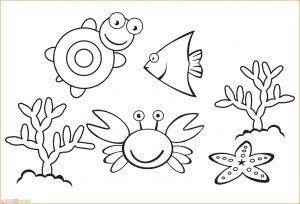 Kumpulan Contoh Sketsa Gambar Flora Dan Fauna Yang Mudah Digambar