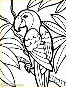 Kumpulan Mewarnai Gambar Sketsa Hewan Burung Desain Interior