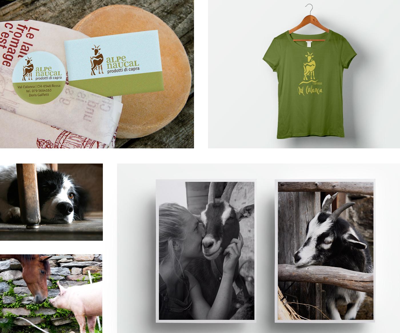 alpe-naucal_shirt_postkarte_etikett_visitenkarte_grafik_design_marina_marina_db