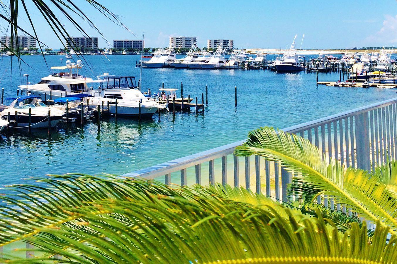 Marina Cafe View