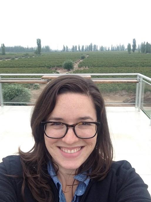 Overlooking Matervini, the modern vineyard