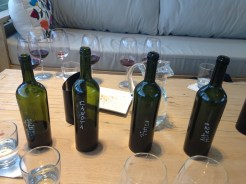 The wines we samples at Matervini