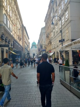 Wandering the (beautiful) streets of Vienna