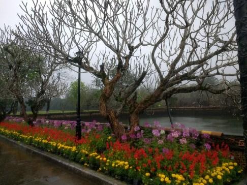 Beautiful landscaping at Hue citadel