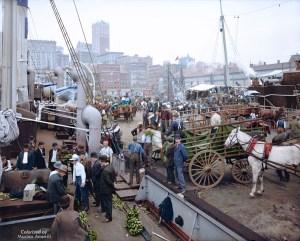 Banana docks, New York, ca. 1890 - 1910.