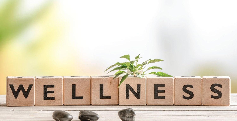 blog wellness υγεία τέχνη ευεξία ευ ζην ευτυχία
