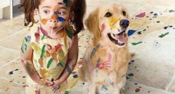 ζώο, ζωάκι, σκύλος, γάτα, κουνέλι, ψυχολογία, παιδί ζώο, παιδί σκύλος,