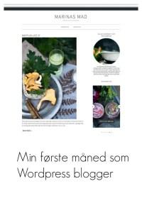 Ny på wordpress, plugins, hosting, design
