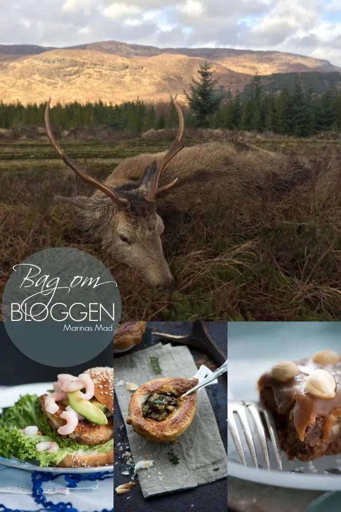 Bag om bloggen februar