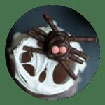 Halloween farm chocolate