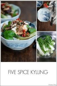 Opskrift på nem kylling med five spice
