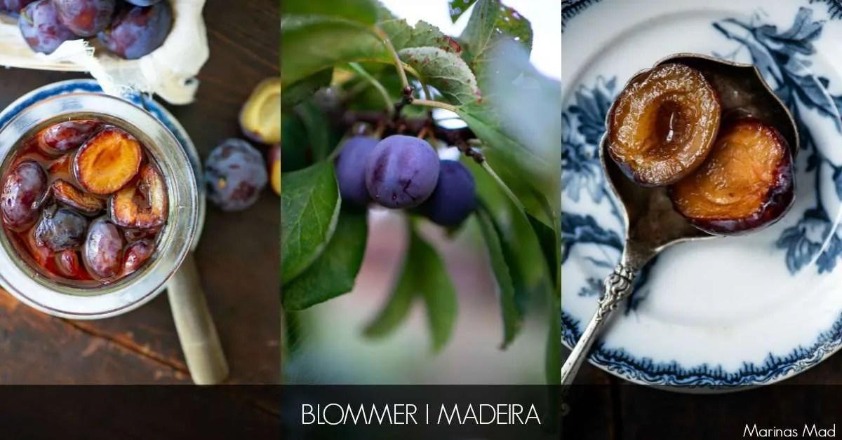 Blommer i Madeira fra den Grønne syltebog