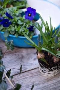 Nem blomster dekoration til forårsjævndøgn