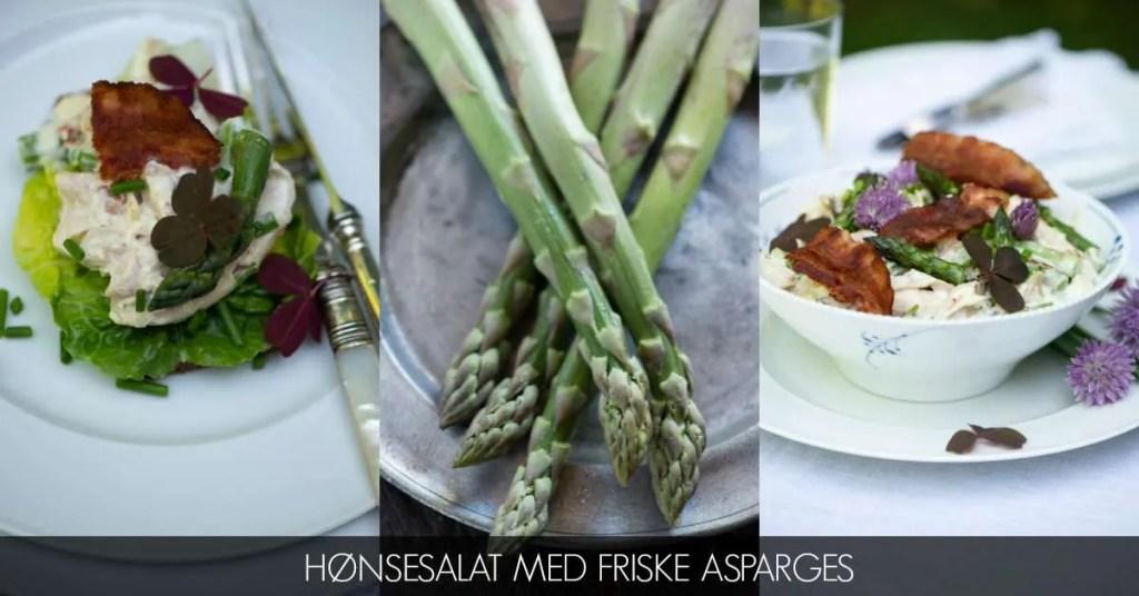 Opskrift på hønsesalat med asparges