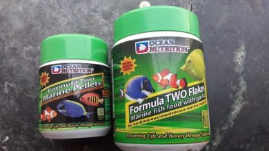 Photo of Ocean Nutrition Formula Two Flakes Vs Pellets