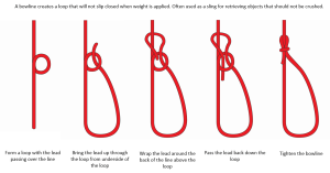 5 Essential Knots Every Boater Should Know   MarineMax