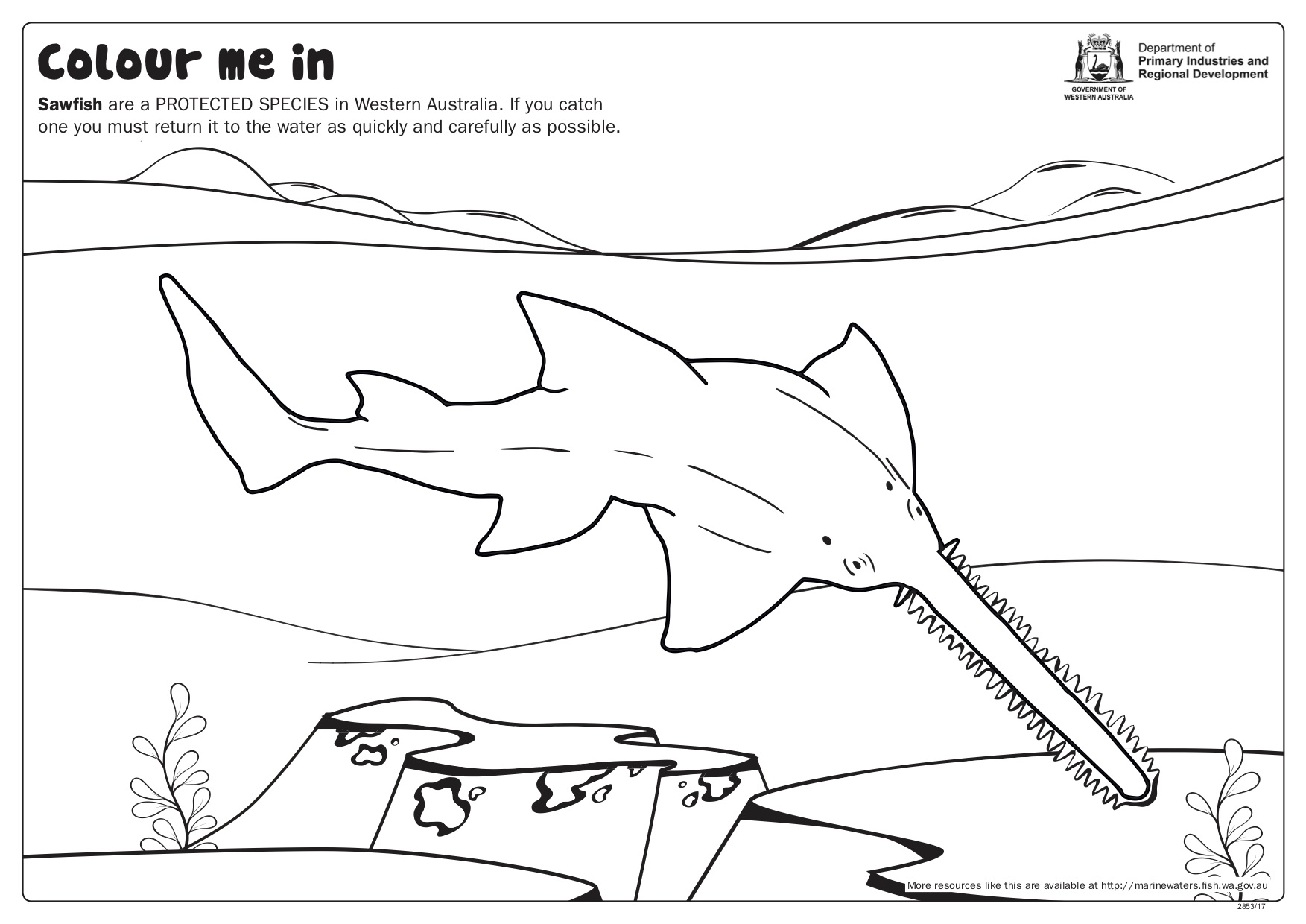 Fishy Fun Sheet Sawfish