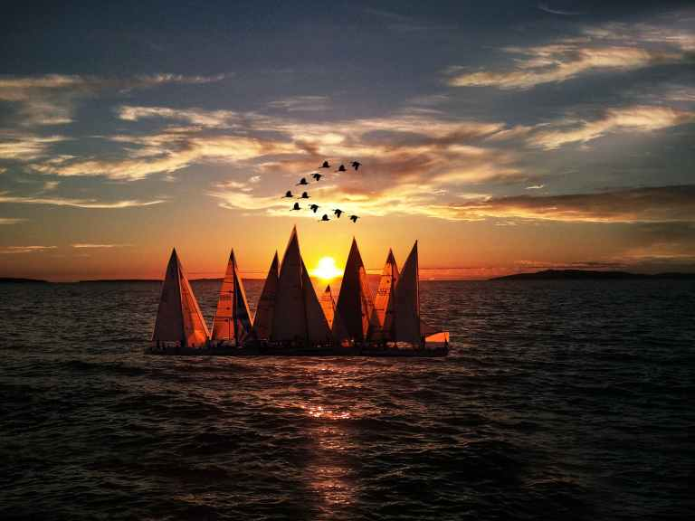 Why do we sail?