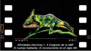 Afinidades electivas 1. A propósito del X Congreso de la Asociación Mundial de Psicoanálisis