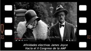 Afinidades electivas James Joyce