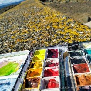 Seaside Yellows Watercolour