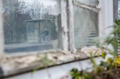 Fenster_am_Bahnhof_15