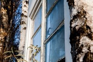 Fenster_zw_Baueme19