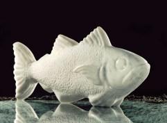 Fische_V01