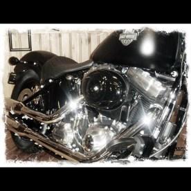 Harley-Davidson Softail Slim - © Marion