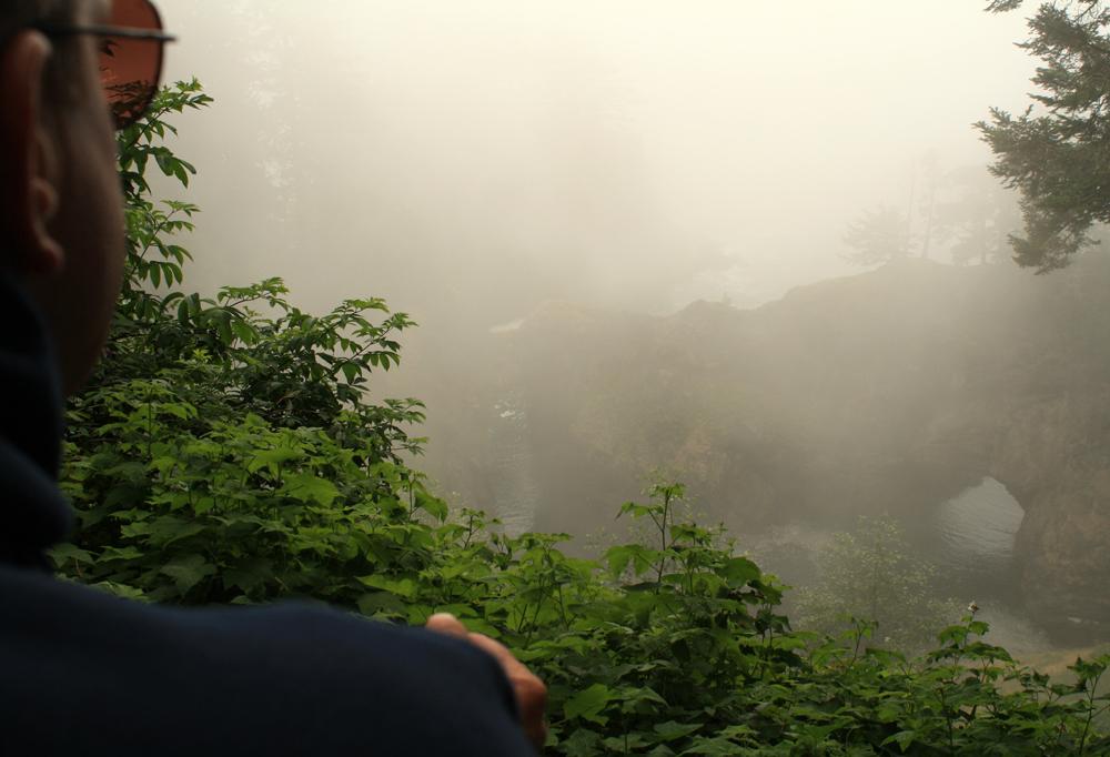 Oregon's coastal Natural Bridges on a foggy day #4, July 20th.  Click photo to enlarge.