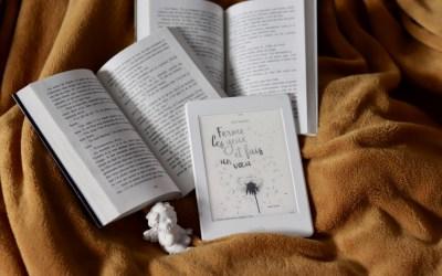 Ferme les yeux et fais un Vœu – Cécile Bergerac