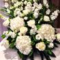 Busby Hotel Wedding Celebrant Marion McGunnigle