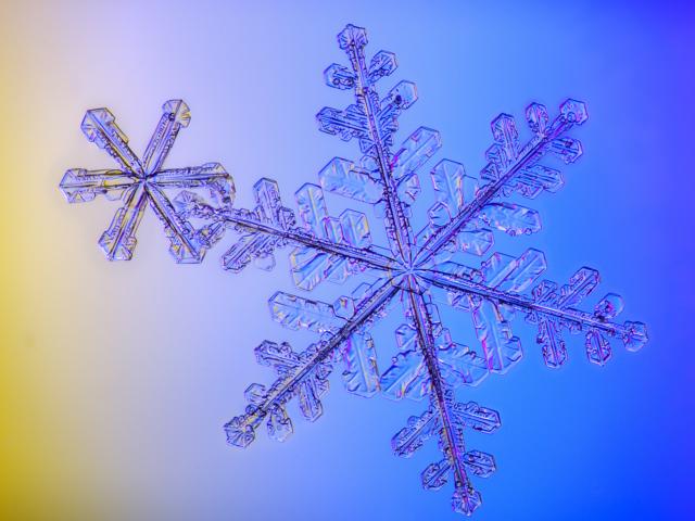 Snowflake, snow crystal, Alaska
