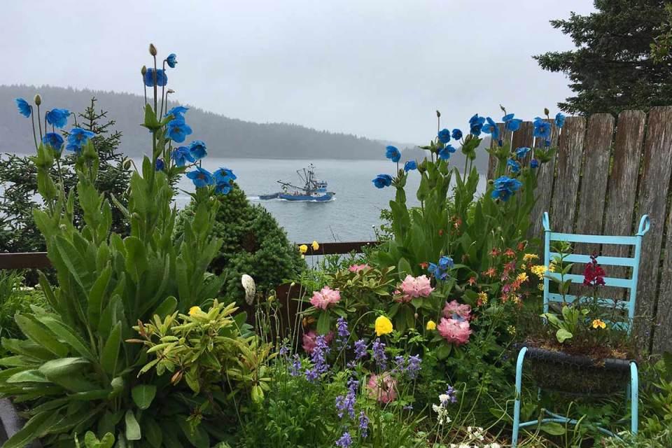 Organic Gardening Cool Climate Gardening