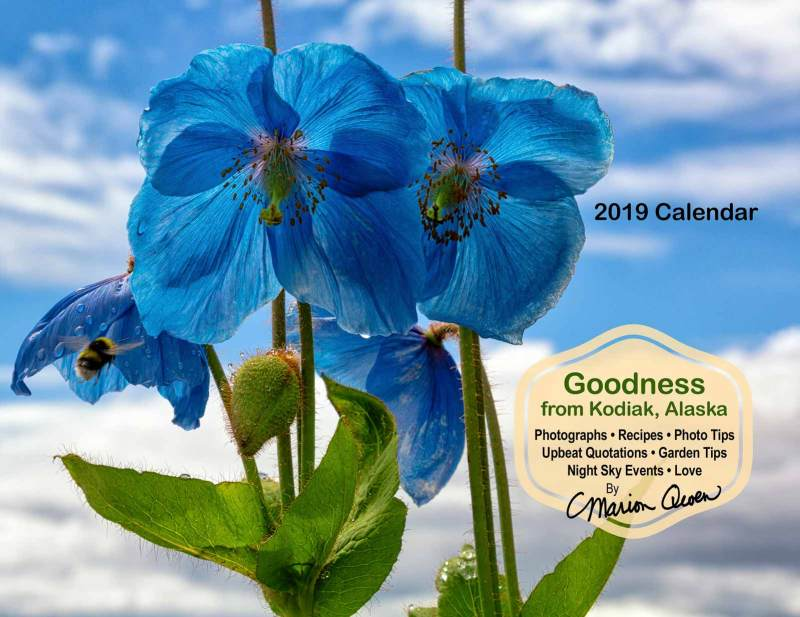 Marion Owen 2019 Calendar