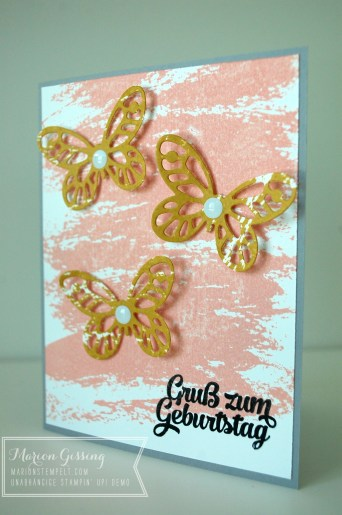 stampinup_watercolor wash_watercolor wings