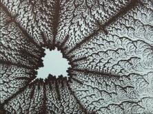 fractprint03