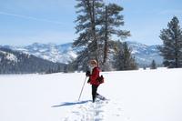 Snowshoeing_22508_011