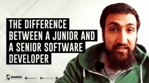 junior and senior software developers