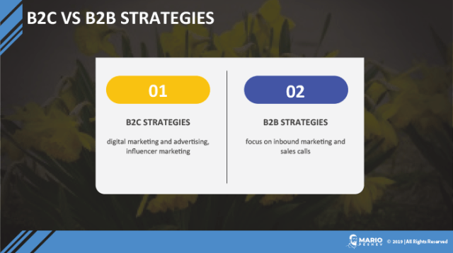 B2C vs B2B strategies