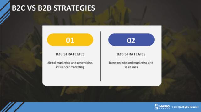 B2C vs B2B strategies