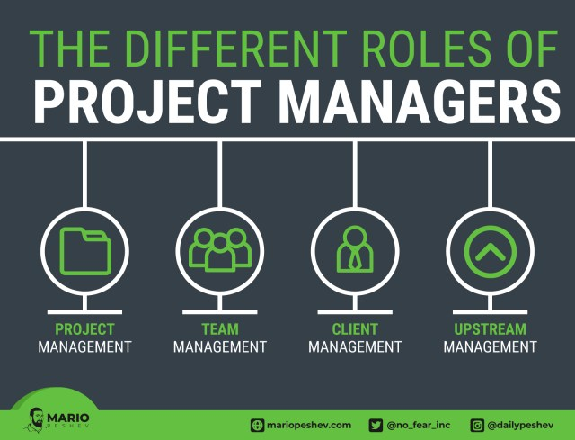 The different roles of Project Managers