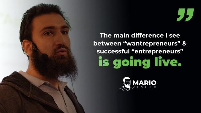 successful entrepreneurs vs wantrepreneurs