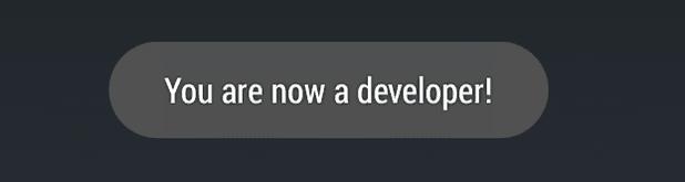 Parabéns! Você é um desenvolvedor agora.