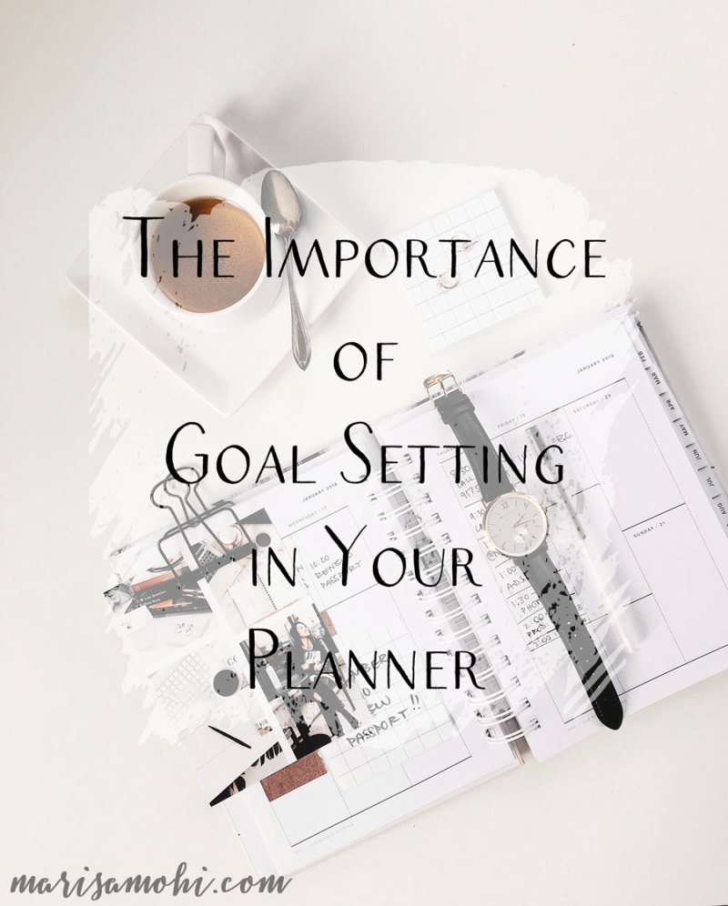 The Importance of Goal Setting in Your Planner | When you've got big dreams and ideas, the importance of goal setting becomes very clear. I like to set goals and track them in my planner so I know that I'm always on track.
