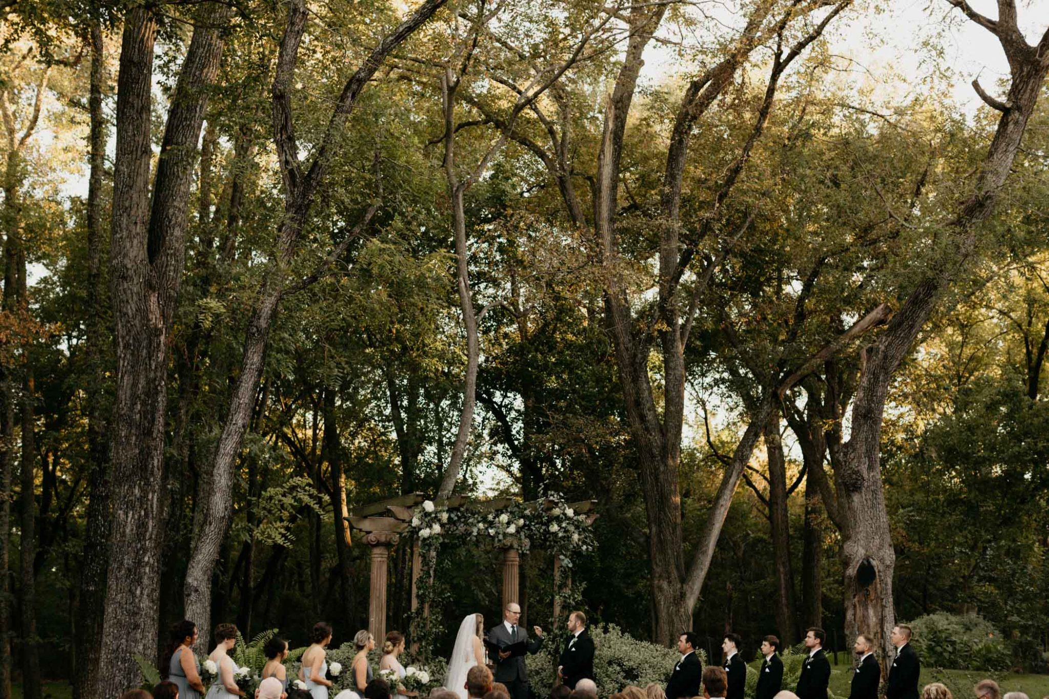 wide angle shot of bridal party with the tall trees as a backdrop