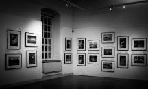 Landscapes of fishing exhibition