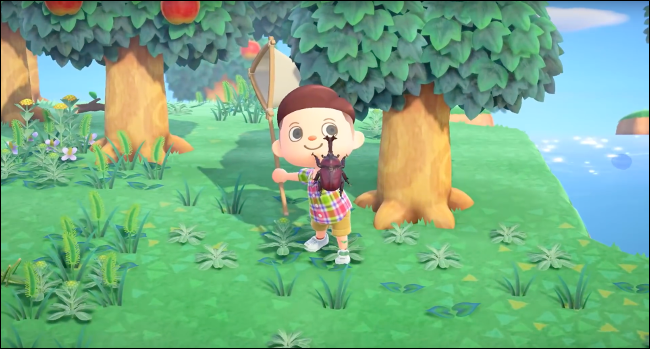 full HD game Animal Crossing: New Horizons