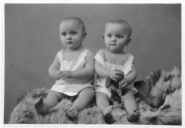 Les jumeaux dans la littérature