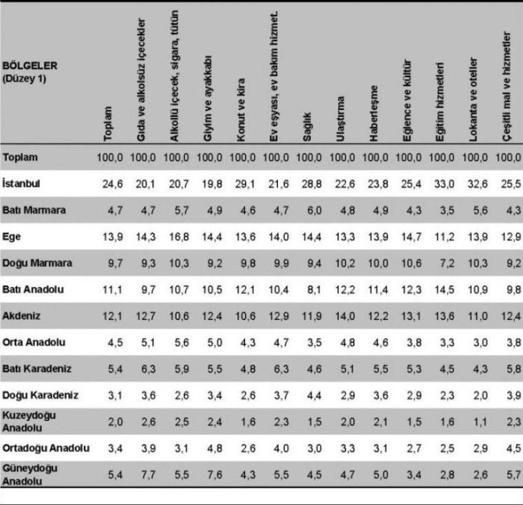 bölgelere göre sektör harcamaları